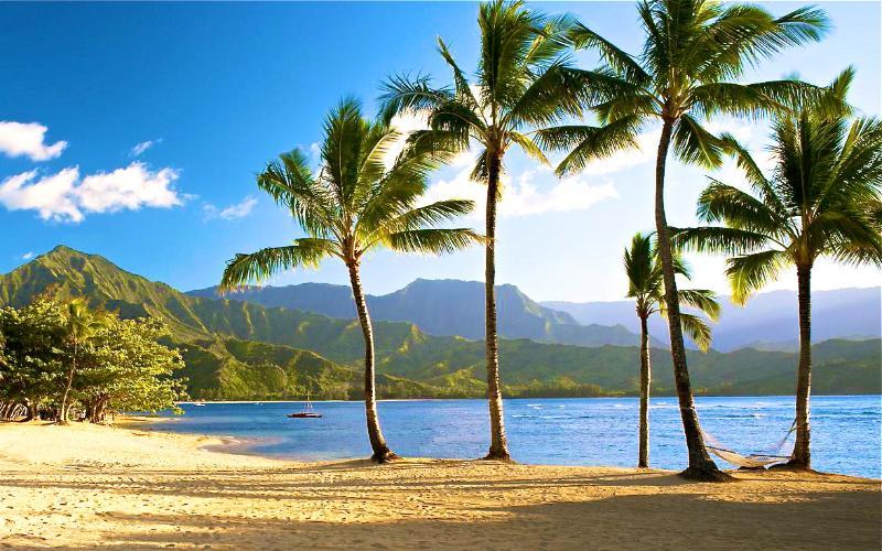 Nearby St. Regis Beach - Ke Aloha Kai - Coming Soon - Princeville - rentals