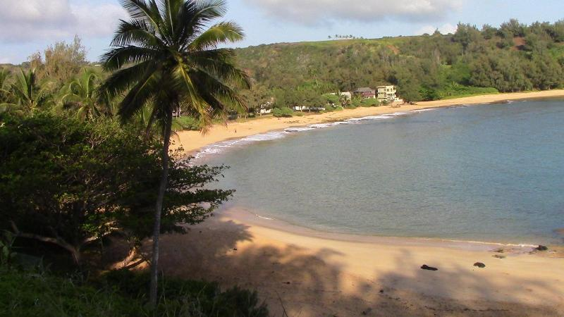 Ocean Front Property With A Billion Dollar View - Image 1 - Anahola - rentals