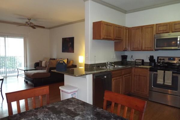 Wonderful Apartment in Woodlak2GA9100414 - Image 1 - Houston - rentals
