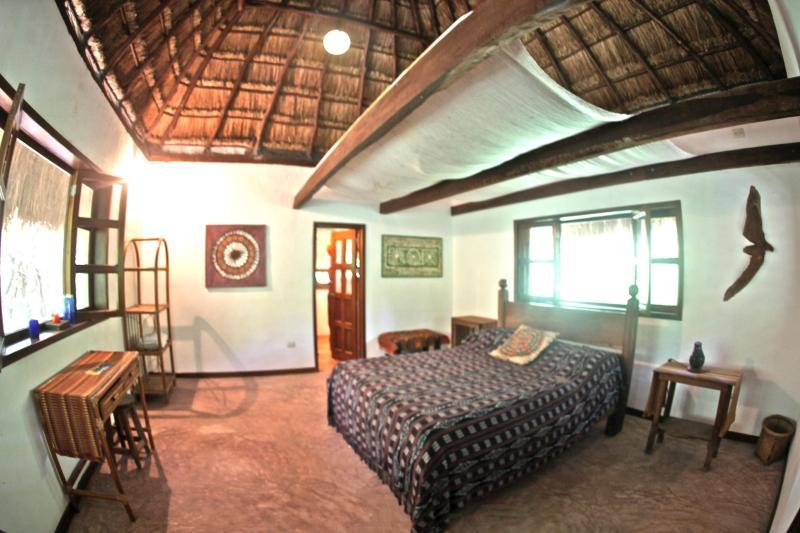 Nice BD in the Jungle - Image 1 - Akumal - rentals