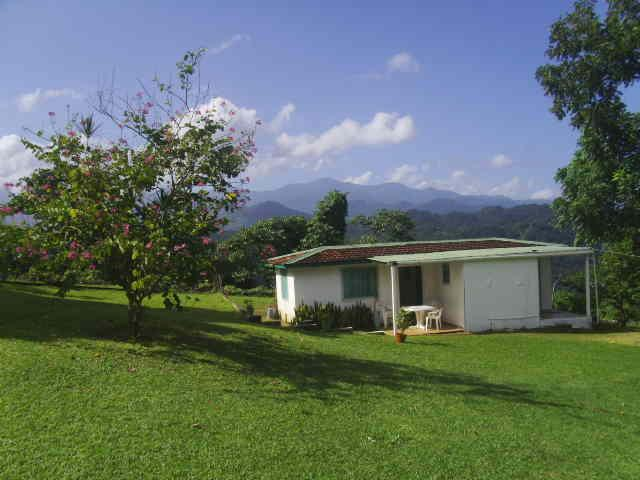Cottage - Shotover Gardens Estate - cottage with pool - Port Antonio - rentals