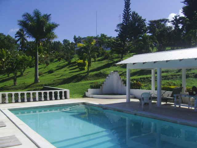 pool - Shotover Gardens Estate - cabin with pool - Port Antonio - rentals