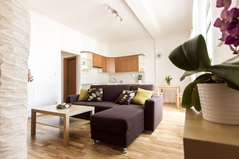 LIVING ROOM - Cool flat with terrace in Prague city center - Prague - rentals
