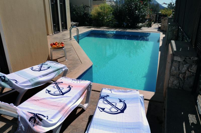 Villa Elif - the pool - LILAC ELIF VILLA - Kalkan - rentals