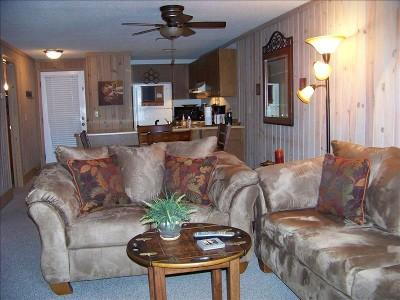 Different view of living room - Keowee Key Golf Course/Lake Condo in Salem SC - Salem - rentals
