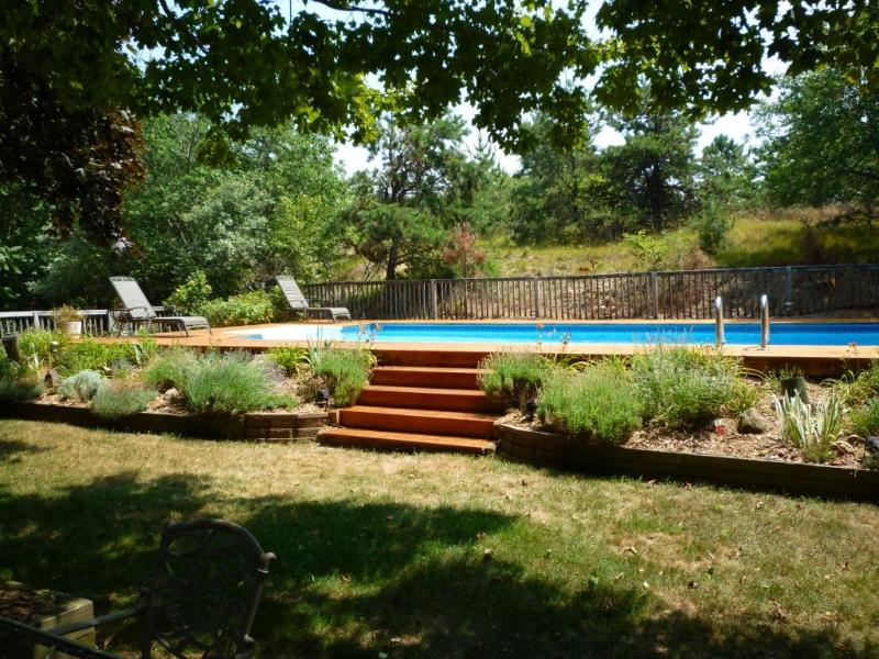 Swimming Pool - Hampton's / Water Mill Contemporary - Water Mill - rentals