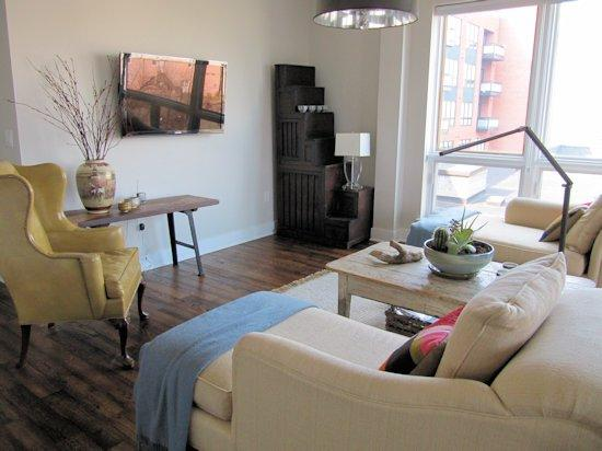 Living Room - Downtown 2 Bedroom Condo - Charlottesville - rentals