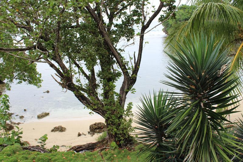 Private Beach - Bolt Hole Cottage - Portland Parish - rentals
