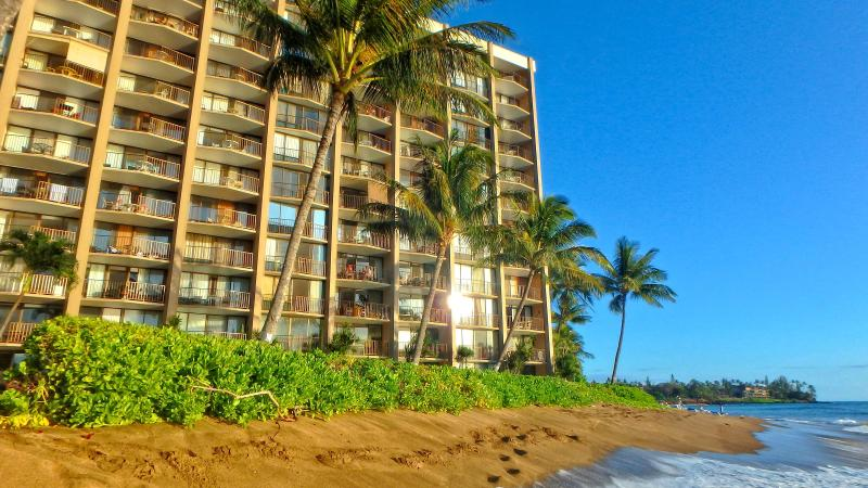 Oceanfront Valley Isle Resort on Kahana Beach - Valley Isle Resort Oceanfront 1 Bdrm #605-BBB A+ - Napili-Honokowai - rentals