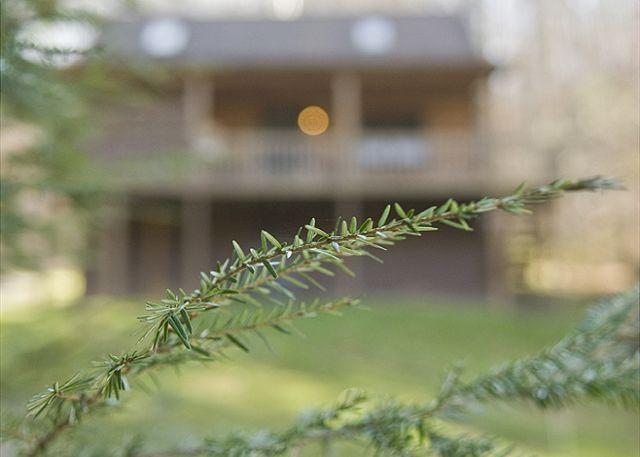 Pioneer | Hocking Hills - Image 1 - South Bloomingville - rentals