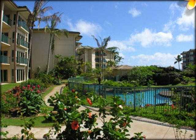 The LARGEST** ground floor Suite @ Wai & 3 BEDS 2 Queen 1King - Image 1 - Kapaa - rentals
