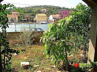 A1(3+1): garden - 02914VLUK A1(3+1) - Vela Luka - Vela Luka - rentals