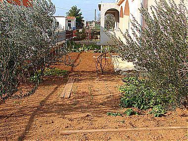 garden (house and surroundings) - 01206VODI A1(4+3) - Vodice - Vodice - rentals