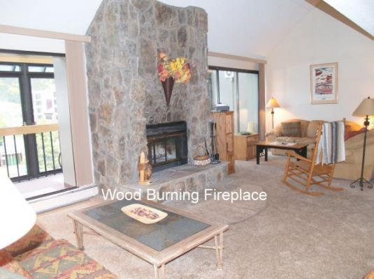 WH307 Wheeler House 3BR 2BA - East Village - Image 1 - Copper Mountain - rentals
