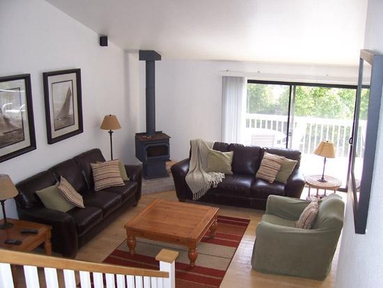 1709 Kennington Rd - Image 1 - Encinitas - rentals