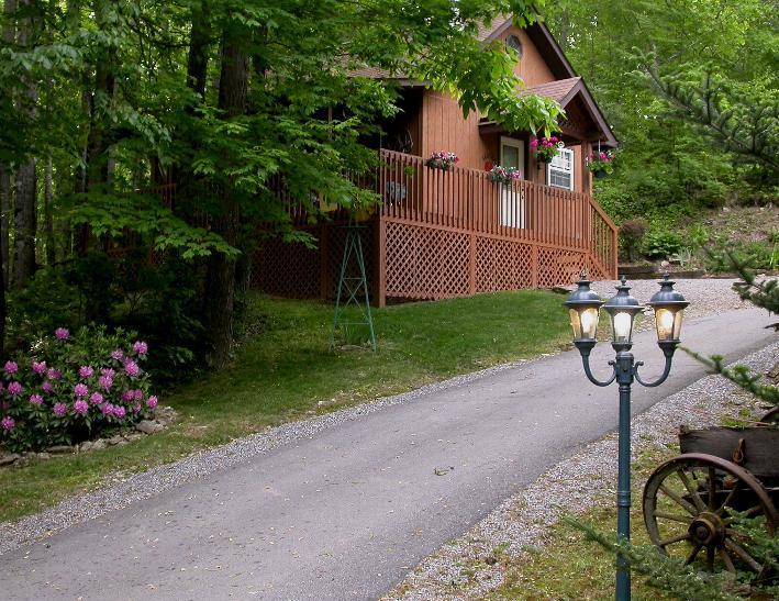 Private Driveway to the cabin. - HONEYMOON CABIN- WIFI-HOT TUB,CREEK $ 695.00 week - Maggie Valley - rentals