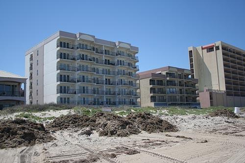 FLORENCE I 203 - Image 1 - South Padre Island - rentals