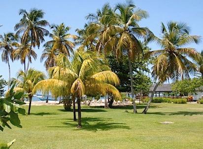 Calabash Hotel - Grenada - Calabash Hotel - Grenada - Lance Aux Epines - rentals