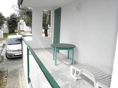 A5(2+1): terrace - 3449 A5(2+1) - Petrcane - Petrcane - rentals