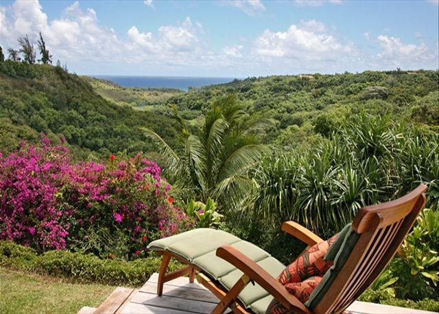 North Shore home with Waterfall Views - Image 1 - Kilauea - rentals