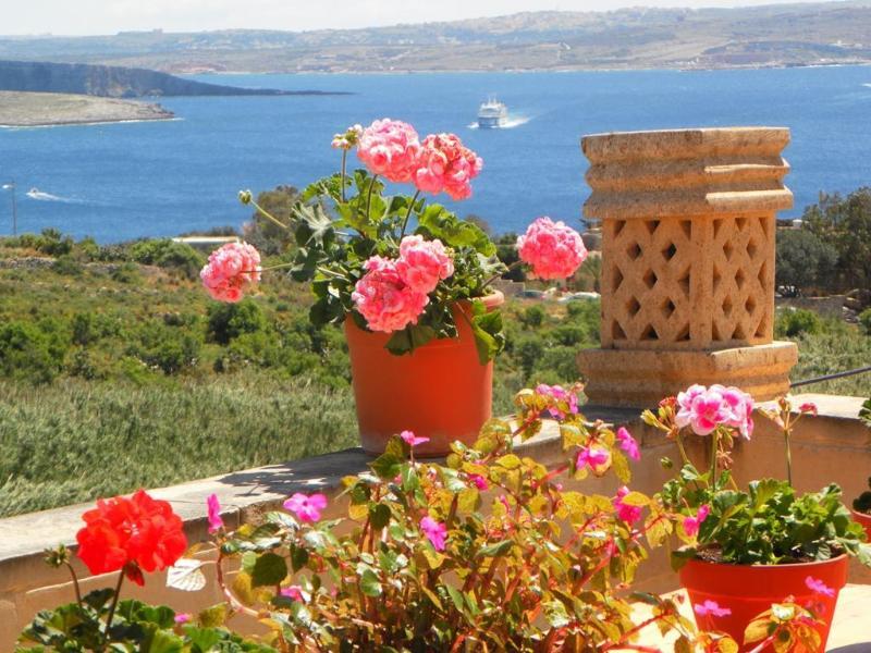 Mediterranea Gozo seaview terrace - Mediterranea Gozo - Trip Advisor 2014 Winner - Ghajnsielem - rentals