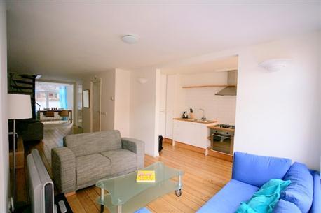 Living Room Laurus Nobilis I Apartment Amsterdam - Laurus Nobilis I - Amsterdam - rentals