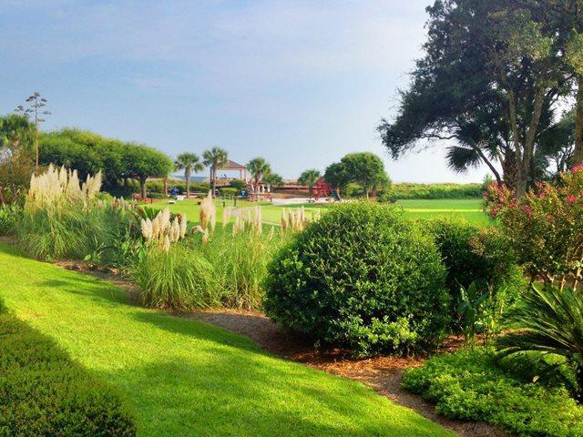 View -  - Hilton Head - rentals