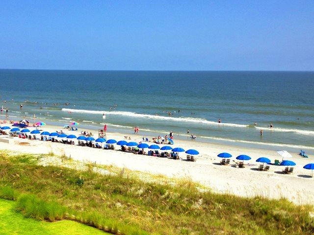 Beach at Island Club - Island Club, 6501 - Hilton Head - rentals