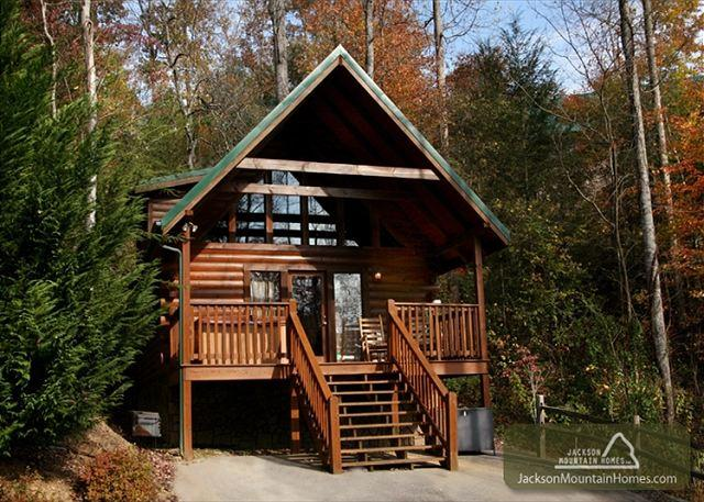 Beary Cozy Jetted Tub Pool Access Hot Tub Pets Grill WiFi  Free Nights - Image 1 - Gatlinburg - rentals