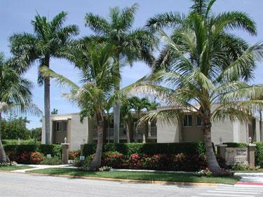 Building - Fifth Avenue Beach Club 205 - Naples - rentals