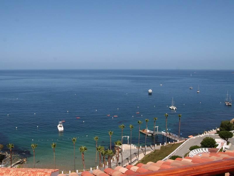 Hamilton Cove Villa 2-46 - Image 1 - Catalina Island - rentals