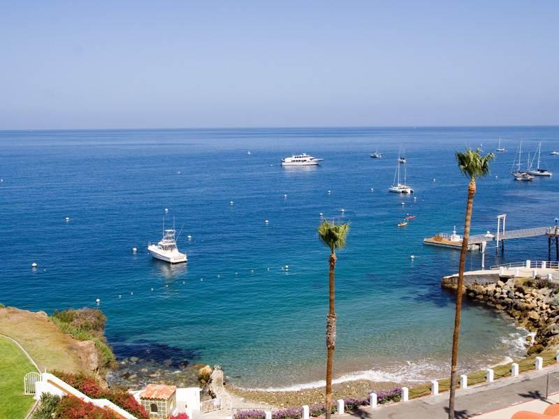 Hamilton Cove Villa 8-95 - Image 1 - Catalina Island - rentals