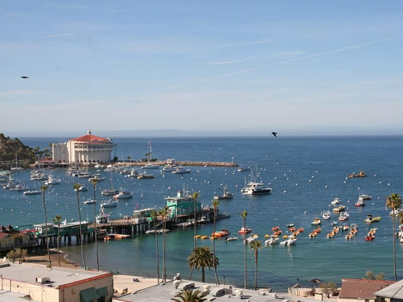 176 Middle Terrace - Image 1 - Catalina Island - rentals