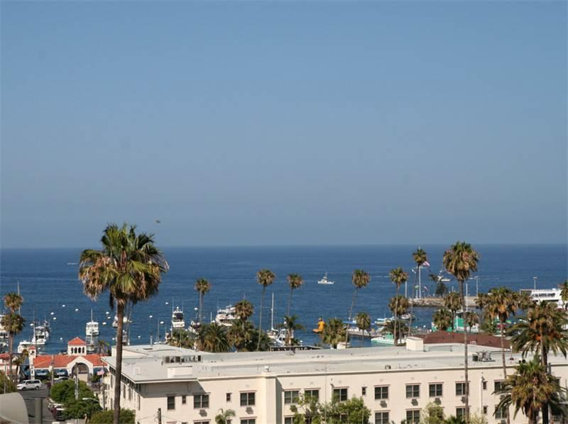217 Beacon A - Image 1 - Catalina Island - rentals