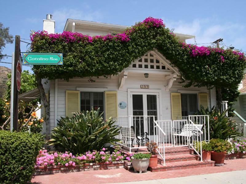 359 Catalina - Image 1 - Catalina Island - rentals