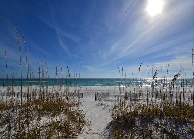 704 Ariola - Image 1 - Pensacola Beach - rentals