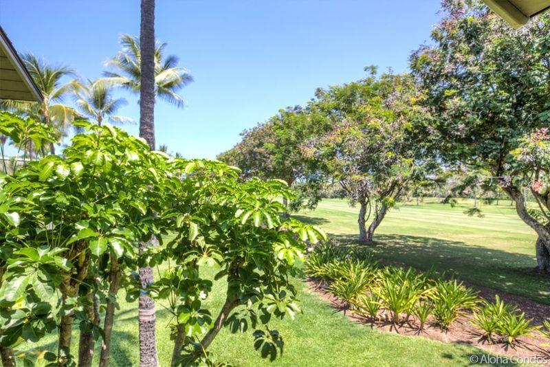 Kanaloa at Kona, Condo 203 - Image 1 - Kailua-Kona - rentals