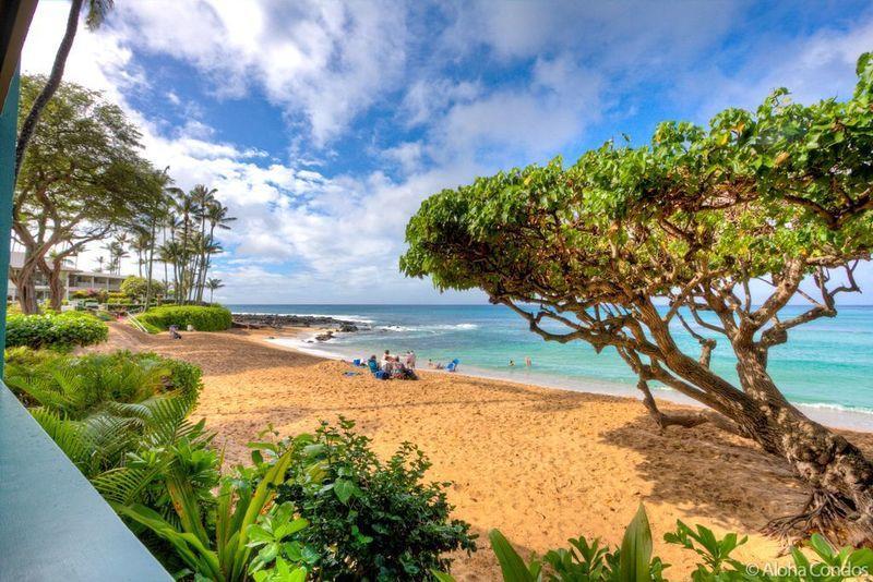 Napili Bay Resort, Condo 106 - Image 1 - Lahaina - rentals