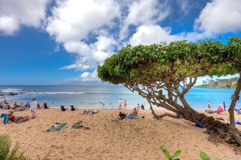 Napili Bay Resort, Condo 107 - Image 1 - Lahaina - rentals