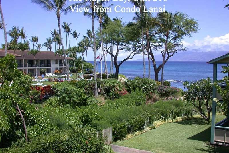 Napili Bay Resort, Condo 216 - Image 1 - Lahaina - rentals