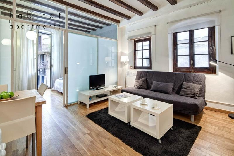 Plaza del Pi, charming 1 bedroom in old town - Image 1 - Barcelona - rentals