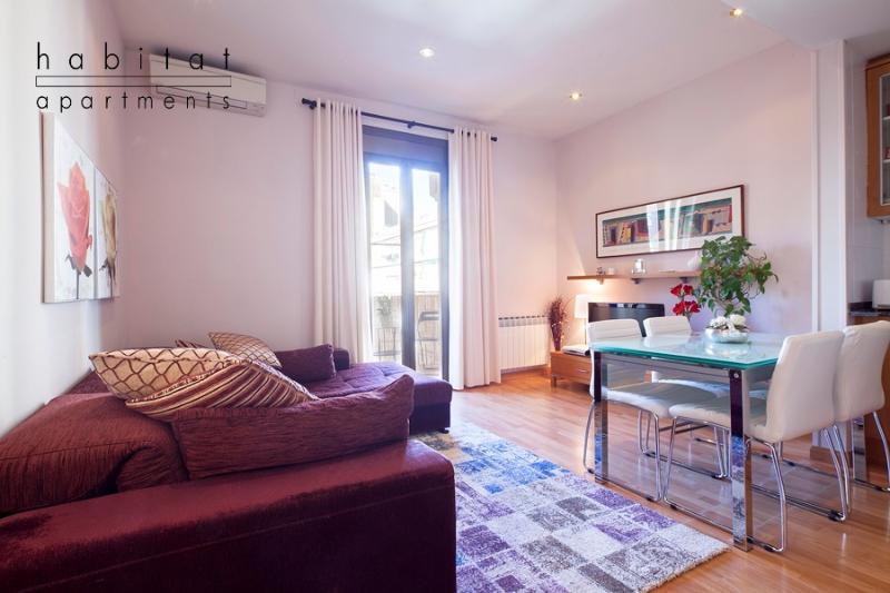 Unic apartment - Image 1 - Barcelona - rentals