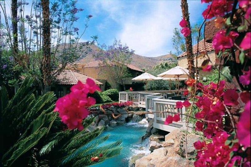 Tropical landscaping throughout complex - Spacious 2 bedroom at Oasis Resort in Palm Springs - Palm Springs - rentals
