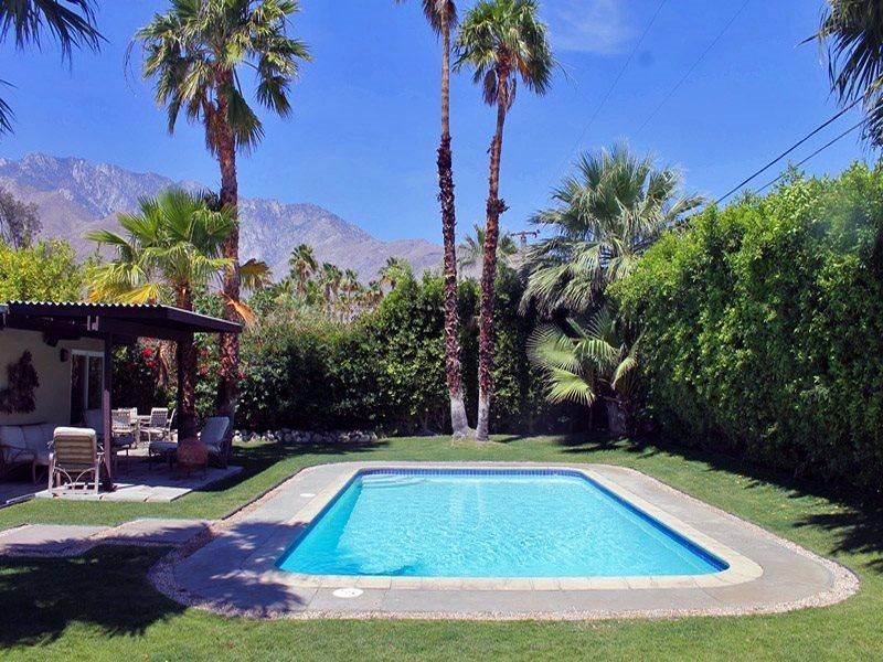 Private Backyard and Pool  - A Stylish Mid Century Modern - Palm Springs - rentals