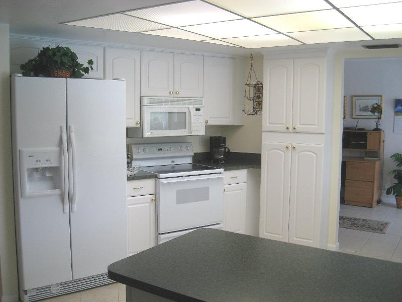 Palm Tree - Image 1 - Cape Coral - rentals