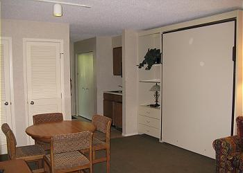 Shore's Enough on East Bay Grand Traverse Resort - Image 1 - Williamsburg - rentals