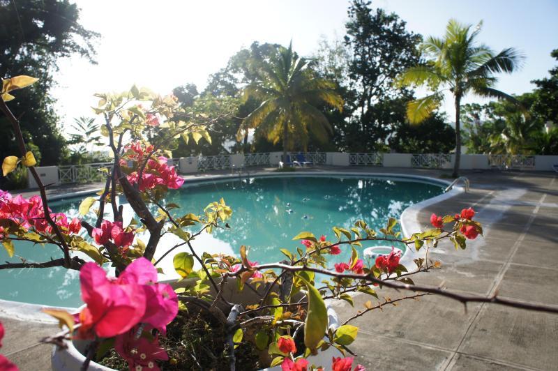 Grounds - Deluxe  2 or 3 bedrm Ocho Rios Seaview Condominium - Ocho Rios - rentals