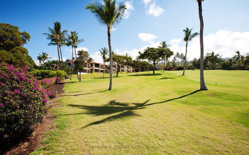 Kona Coast Resort, Condo 5-102 - Image 1 - Kailua-Kona - rentals