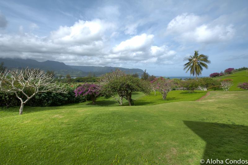 Hanalei Bay Resort, Condo 8101-02 - Image 1 - Princeville - rentals