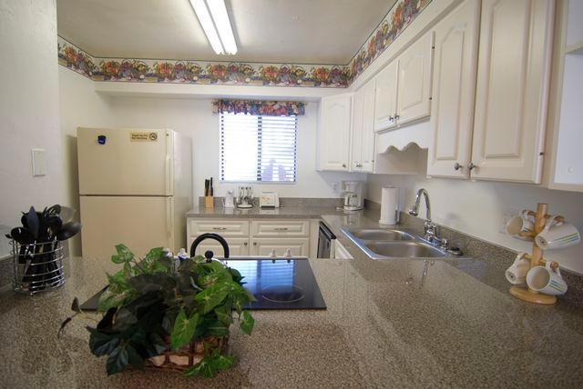 kitchen - Runaway Bay - Bradenton Beach - rentals